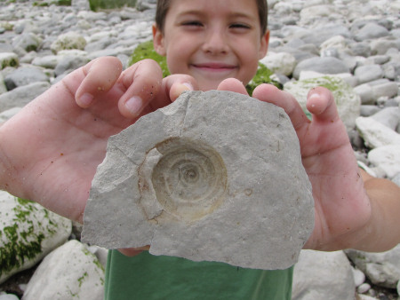 Impression of a fossil gastropod at Beachy Head