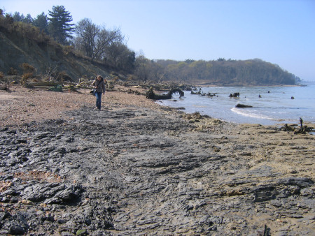 Lucinda Shepherd fossil hunting at Bouldnor