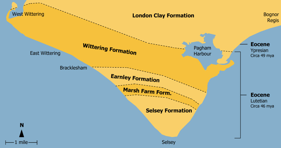 Bracklesham Bay and Selsey geology map diagram