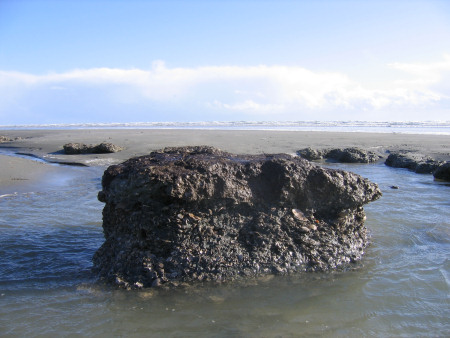Mushroom-shaped clay pedestal at Bracklesham Bay