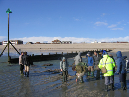 Fossil hunters at Bracklesham Bay