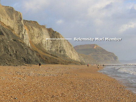 Charmouth cliffs diagram