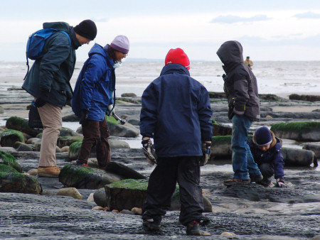 Family fossil hunting at Charmouth