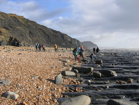 Fossil hunters on the beach at Charmouth