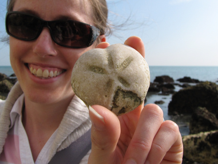 Lucinda Shepherd with a fossil Micraster echinoid at Dover