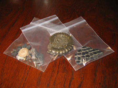 Sealable plastic bags for storing fossils