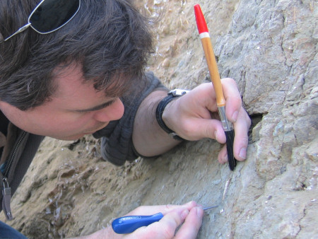 Roy Shepherd extracts a fossil using a steel point and brush