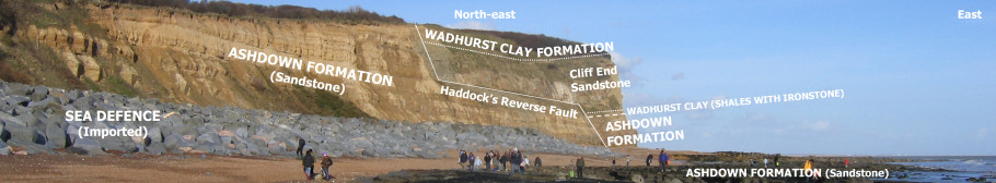 Geology panoramic of Fairlight cove cliffs and foreshore