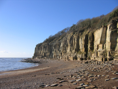 Fairlight cliffs