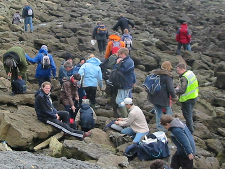 Fossil hunters at Folkestone
