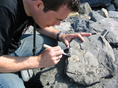 Roy Shepherd sweeps away surface sediment to reveal a fossil ammonite