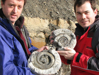 Discovering Fossils home page image 8