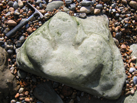 Iguanodon foot cast on the foreshore at Hastings