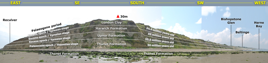 Geology panoramic of Herne Bay by Roy Shepherd