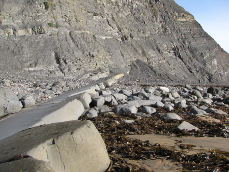 Upper Kimmeridge Clay exposed at Brandy Bay