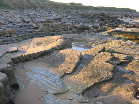 Prehistoric ripple marks preserved in the rocks at Kingsbarns