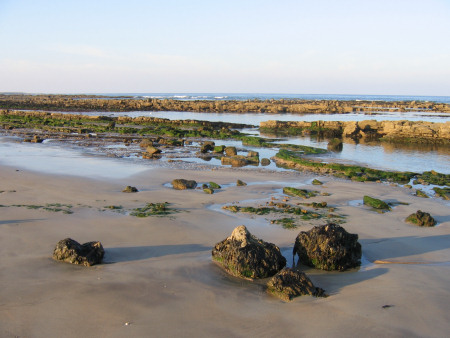 Foreshore exposed at Kingsbarns