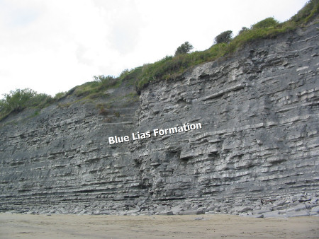 Blue Lias Formation at Church Cliffs near Lyme Regis