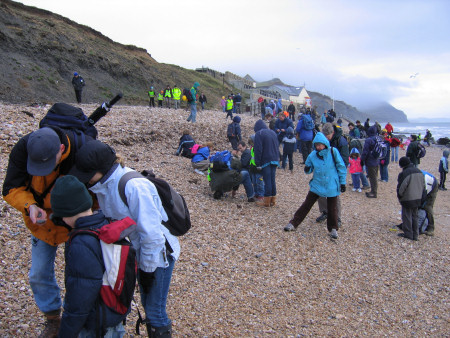 Fossil hunters search the foreshore at Lyme Regis for loose fossils