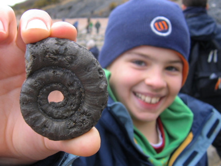 Fossil pyritised ammonite at Lyme Regis
