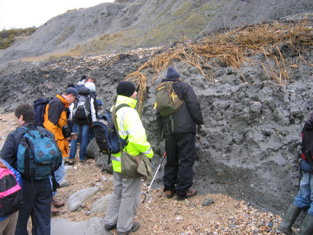 Fossil hunters at Lyme Regis searching for fossils within the Shales-with-Beef