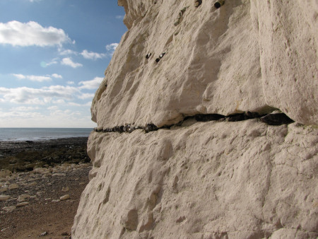 Hope Gap Sheet Flint at Seaford Head