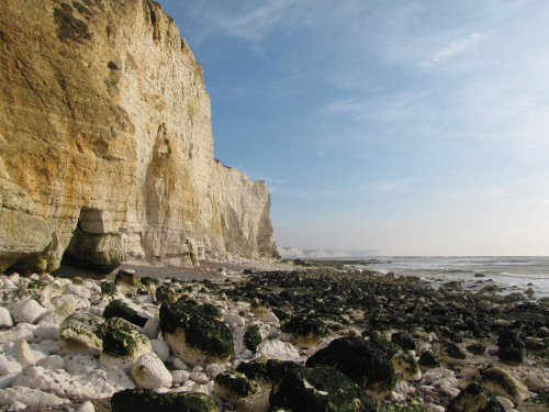 Seaford Head chalk cliffs looking towards Seven Sisters