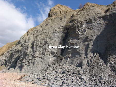 Eype Clay Member exposed in the cliffs at Seatown