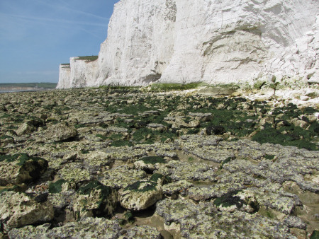 Seven Sisters Flint Band exposed on the foreshore