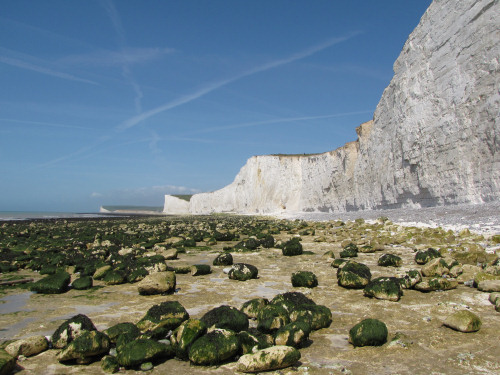 Seven Sisters chalk cliffs and foreshore at low-tide