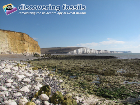 Seven Sisters chalk cliffs wallpaper