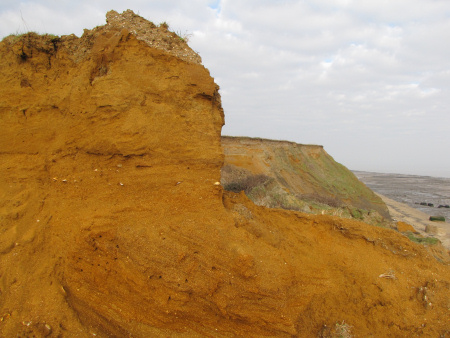 Vivid-orange coloured Red Crag Formation in situ at the cliff-top near The Naze Tower