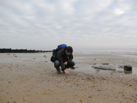 Roy Shepherd fossil hunting at Walton-on-the-Naze