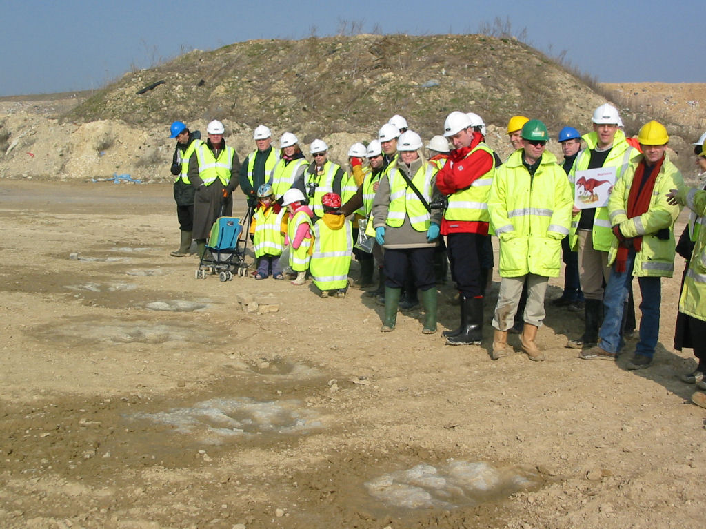 Ardley Quarry Megalosaurus Dinosaur Footprint group