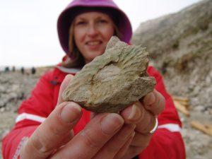 Beachy Head fossil ammonite