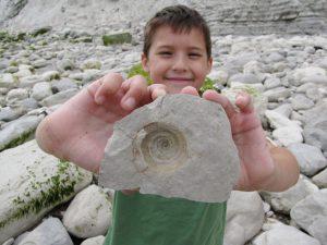 Beachy Head fossil gastropod