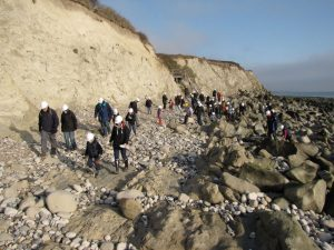 Beachy Head fossil hunting