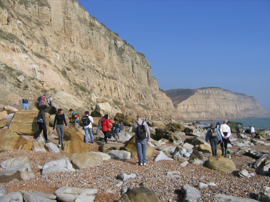Fossil hunting at Hastings