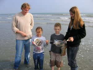 Bracklesham Bay family fossil hunting