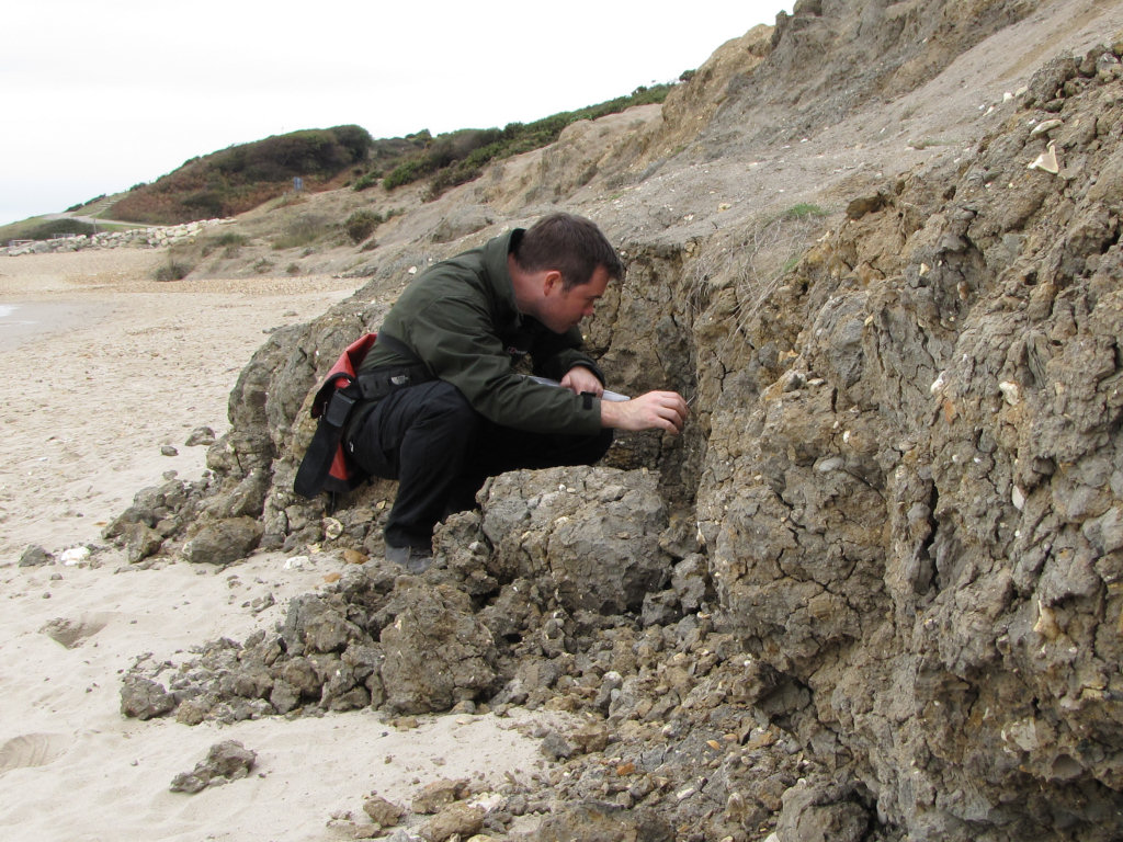Barton on Sea fossil hunting