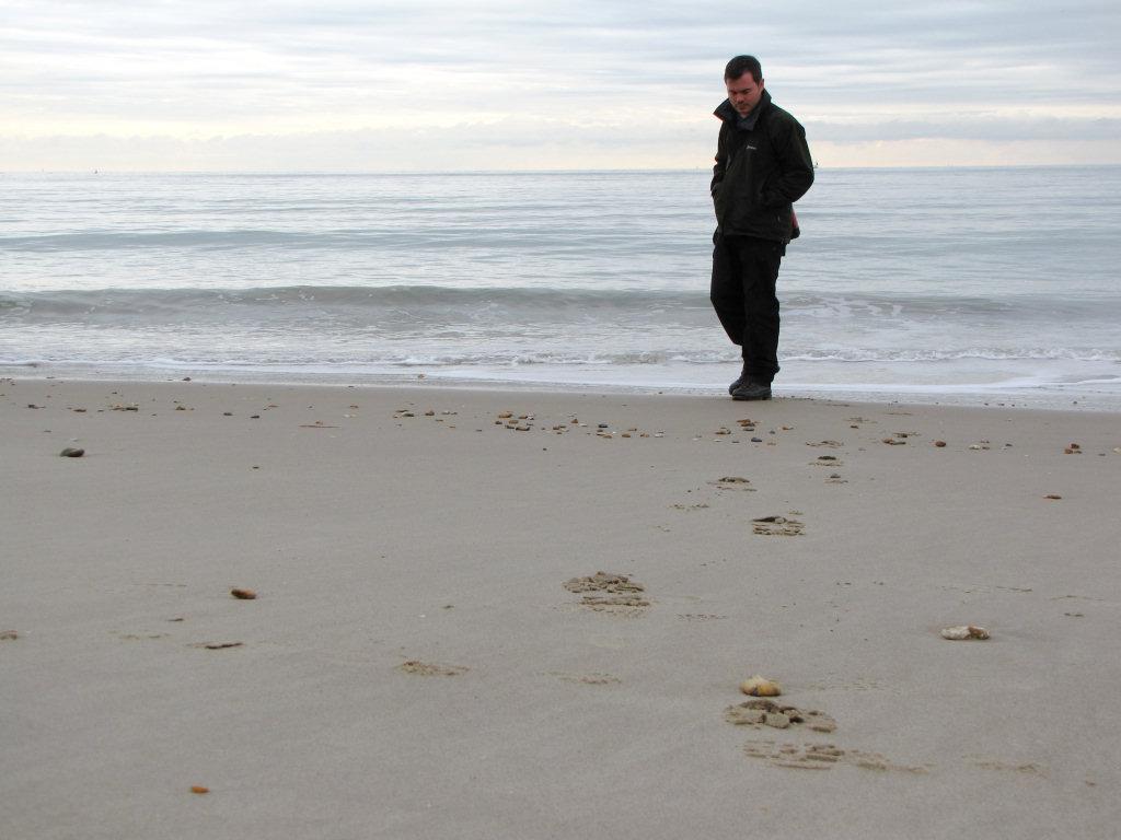 Barton on Sea fossil hunting
