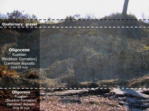 Bouldnor geology