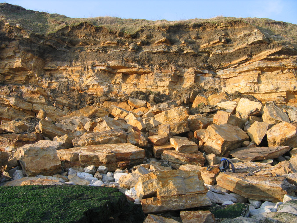 Durlston Bay rockfall