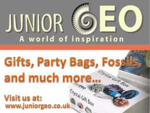 JuniorGeo advert2