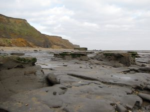 Walton-on-the-Naze London Clay Formation