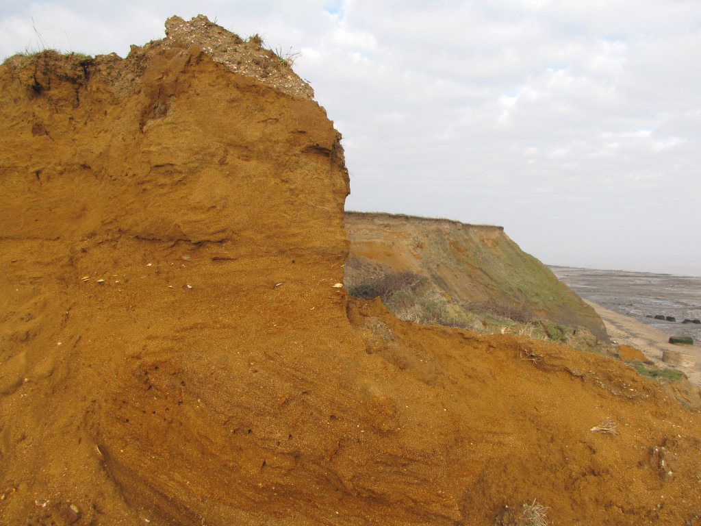 Walton-on-the-Naze Red Crag Formation