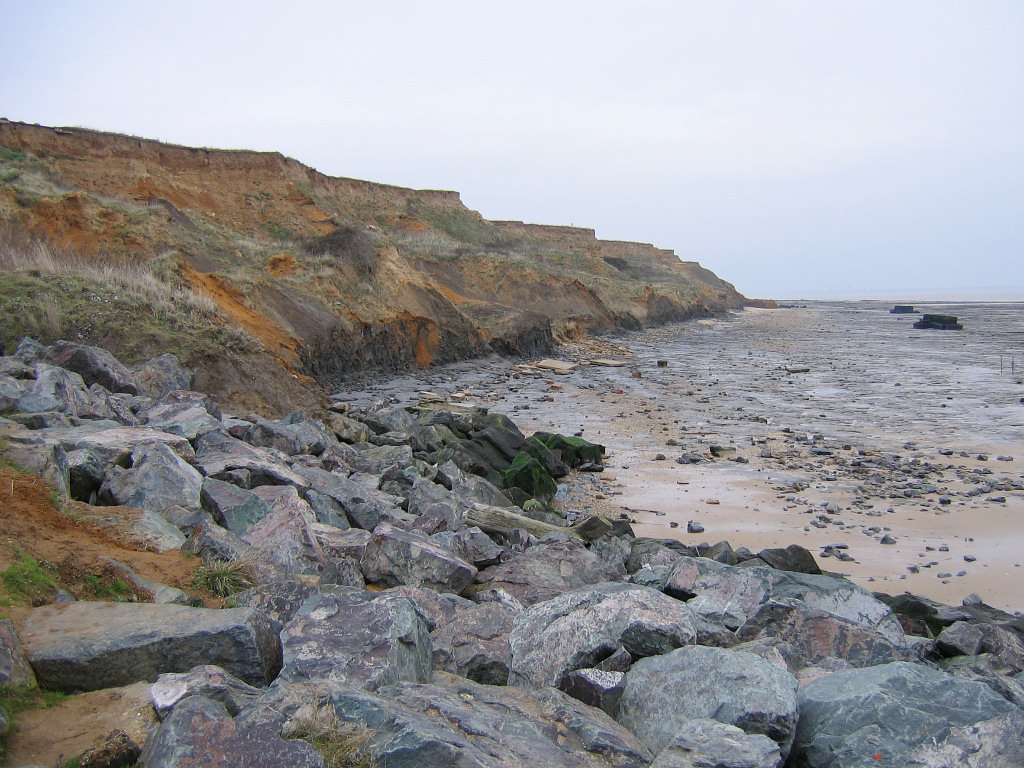 Walton-on-the-Naze (Essex) | Discovering Fossils