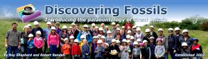Discovering Fossils Main Header showing a group of fossil hunters